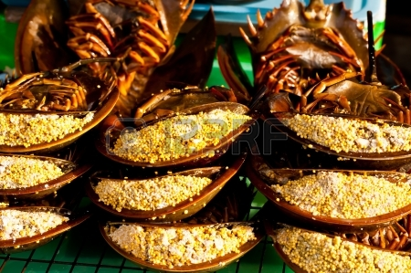 King crabs in Thailand