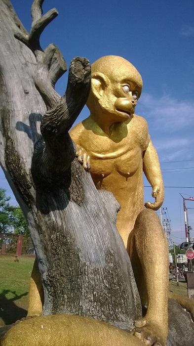 Monkeying around in Lopburi,Thailand