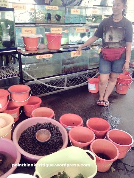 Thai Superstition Vendor selling live aquatic creatures