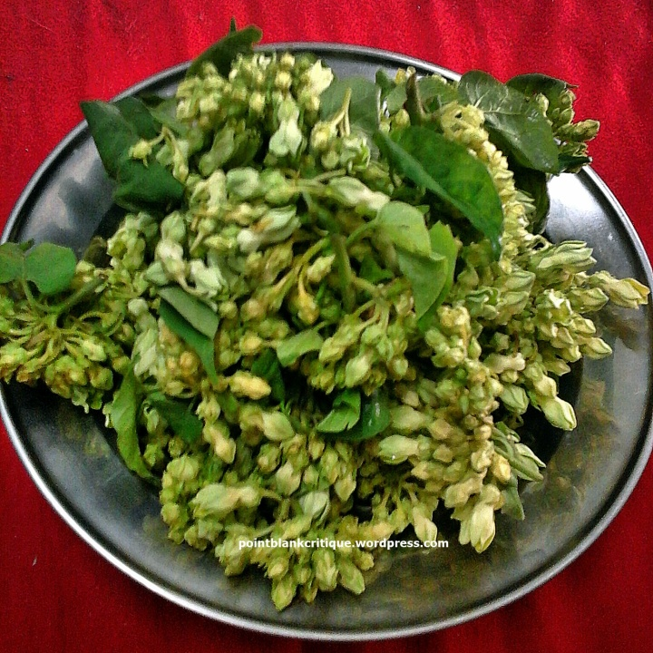 cowslip creeper Flowers in Thai Cooking