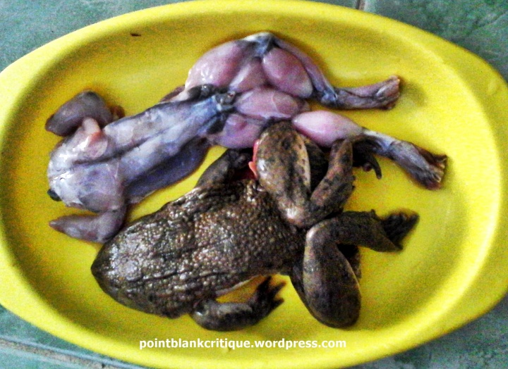 Frogs for cooking