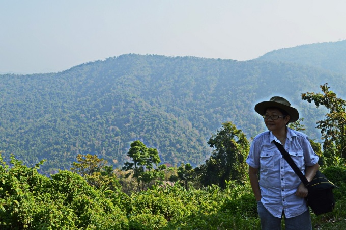 A walk among the giants in Khao yai National Park