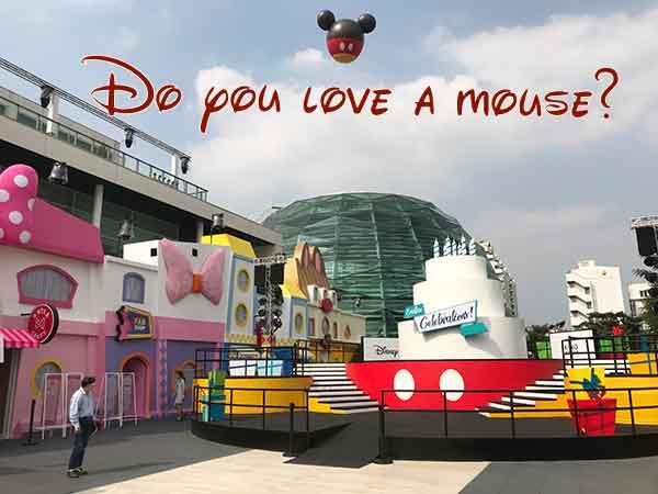 Do you love a Mouse?